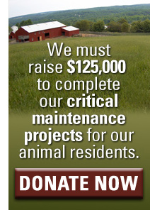 Your support is needed to complete our critical maintenance projects.